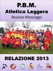 Relazione 2013 low